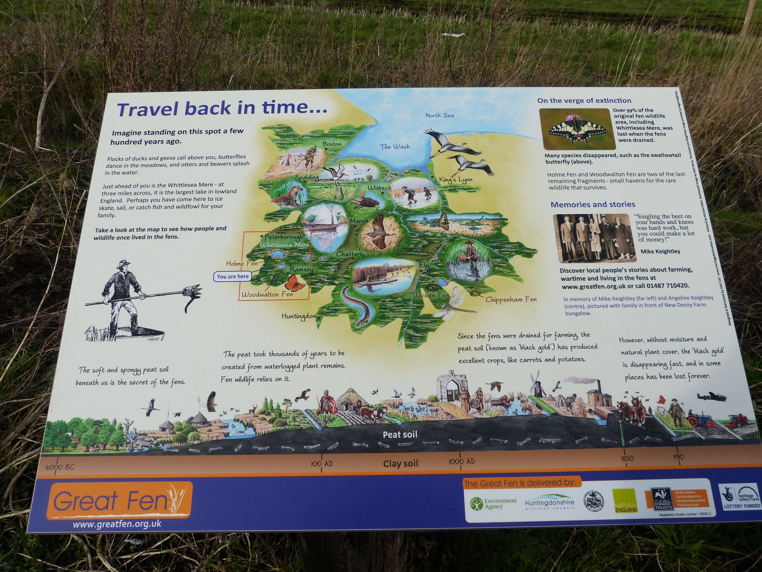 History of the Landscape, Great Fen